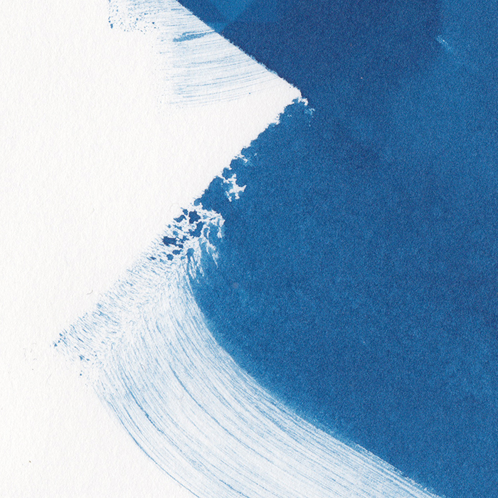 blue twenty web
